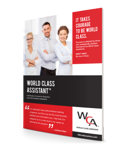 World_Class_Assistant_Flyer
