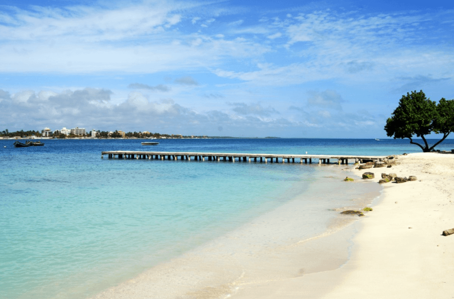 vacation_planning